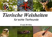 Tierische Weisheiten (Wandkalender 2020 DIN A4 quer) - Kalender - Ursula Di Chito,