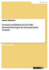 Vertrieb im B2B-Bereich für KMU. Herausforderungen im internationalen Vertrieb - eBook - Armin Schnürer,