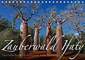 Zauberwald Ifaty · Traumhafte Baobabs in Madagaskar (Tischkalender 2020 DIN A5 quer) - Kalender - Olaf Bruhn,