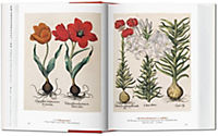 A Garden Eden. Masterpieces of Botanical Illustration - Produktdetailbild 3