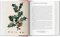 A Garden Eden. Masterpieces of Botanical Illustration - Produktdetailbild 2