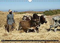 Äthiopien - das Hochland Afrikas (Wandkalender 2018 DIN A4 quer) - Produktdetailbild 7