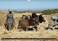 Äthiopien - das Hochland Afrikas (Wandkalender 2018 DIN A3 quer) - Produktdetailbild 4