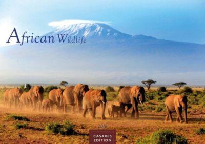 African Wildlife 2018