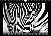 Afrika Schwarz - Weiss (Wandkalender 2018 DIN A4 quer) - Produktdetailbild 2