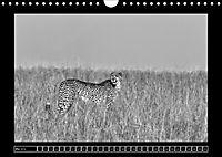 Afrika Schwarz - Weiss (Wandkalender 2018 DIN A4 quer) - Produktdetailbild 5