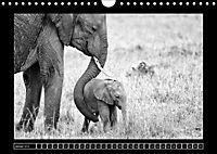 Afrika Schwarz - Weiss (Wandkalender 2018 DIN A4 quer) - Produktdetailbild 1