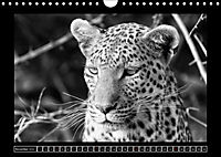 Afrika Schwarz - Weiss (Wandkalender 2018 DIN A4 quer) - Produktdetailbild 11