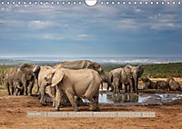 Afrikas Tierwelt - Wilde Elefanten (Wandkalender 2018 DIN A4 quer) Dieser erfolgreiche Kalender wurde dieses Jahr mit gl - Produktdetailbild 1