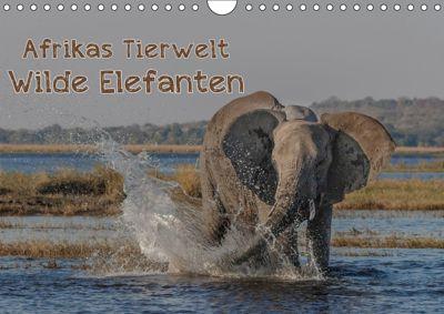 Afrikas Tierwelt - Wilde Elefanten (Wandkalender 2018 DIN A4 quer) Dieser erfolgreiche Kalender wurde dieses Jahr mit gl, Michael Voß