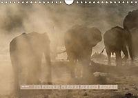 Afrikas Tierwelt - Wilde Elefanten (Wandkalender 2018 DIN A4 quer) Dieser erfolgreiche Kalender wurde dieses Jahr mit gl - Produktdetailbild 6