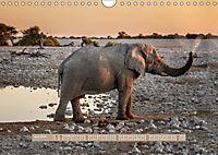 Afrikas Tierwelt - Wilde Elefanten (Wandkalender 2018 DIN A4 quer) Dieser erfolgreiche Kalender wurde dieses Jahr mit gl - Produktdetailbild 4
