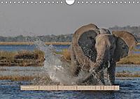 Afrikas Tierwelt - Wilde Elefanten (Wandkalender 2018 DIN A4 quer) Dieser erfolgreiche Kalender wurde dieses Jahr mit gl - Produktdetailbild 12