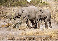 Afrikas Tierwelt - Wilde Elefanten (Wandkalender 2018 DIN A4 quer) Dieser erfolgreiche Kalender wurde dieses Jahr mit gl - Produktdetailbild 10