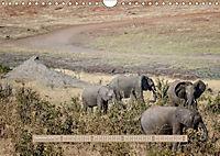 Afrikas Tierwelt - Wilde Elefanten (Wandkalender 2018 DIN A4 quer) Dieser erfolgreiche Kalender wurde dieses Jahr mit gl - Produktdetailbild 9