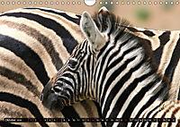 Afrikas wildes Kinderzimmer (Wandkalender 2018 DIN A4 quer) Dieser erfolgreiche Kalender wurde dieses Jahr mit gleichen - Produktdetailbild 10
