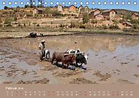 Alltag in Madagaskar (Tischkalender 2018 DIN A5 quer) - Produktdetailbild 2
