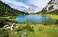 Alpenwelten - Produktdetailbild 6