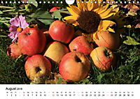 Alte Apfelsorten (Wandkalender 2018 DIN A4 quer) - Produktdetailbild 8