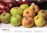 Alte Apfelsorten (Wandkalender 2018 DIN A4 quer) - Produktdetailbild 9