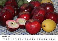 Alte Apfelsorten (Wandkalender 2018 DIN A4 quer) - Produktdetailbild 10