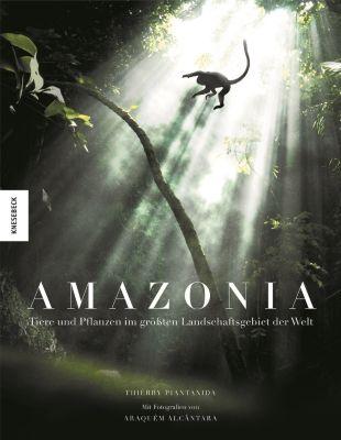 Amazonia, Thierry Piantanida, Thierry Ragobert, Araquèm Alcantara