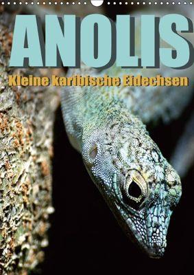 Anolis - Kleine karibische Eidechsen (Wandkalender 2018 DIN A3 hoch), Jürgen Warschun