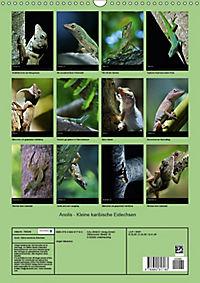 Anolis - Kleine karibische Eidechsen (Wandkalender 2018 DIN A3 hoch) - Produktdetailbild 13