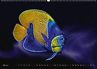 Artwork Unterwasser - Erlebnis Tauchen (Wandkalender 2018 DIN A2 quer) - Produktdetailbild 7