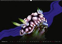 Artwork Unterwasser - Erlebnis Tauchen (Wandkalender 2018 DIN A2 quer) - Produktdetailbild 2