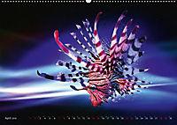 Artwork Unterwasser - Erlebnis Tauchen (Wandkalender 2018 DIN A2 quer) - Produktdetailbild 4