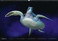 Artwork Unterwasser - Erlebnis Tauchen (Wandkalender 2018 DIN A2 quer) - Produktdetailbild 8