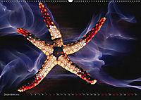 Artwork Unterwasser - Erlebnis Tauchen (Wandkalender 2018 DIN A2 quer) - Produktdetailbild 12