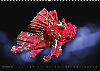 Artwork Unterwasser - Erlebnis Tauchen (Wandkalender 2018 DIN A2 quer) - Produktdetailbild 11