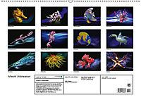 Artwork Unterwasser - Erlebnis Tauchen (Wandkalender 2018 DIN A2 quer) - Produktdetailbild 13