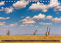 Auf Safari in Kenia 2018 (Tischkalender 2018 DIN A5 quer) - Produktdetailbild 7