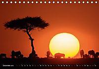 Auf Safari in Kenia 2018 (Tischkalender 2018 DIN A5 quer) - Produktdetailbild 12