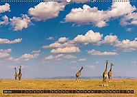 Auf Safari in Kenia 2018 (Wandkalender 2018 DIN A2 quer) - Produktdetailbild 7