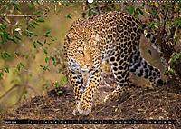 Auf Safari in Kenia 2018 (Wandkalender 2018 DIN A2 quer) - Produktdetailbild 6
