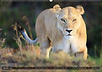 Auf Safari in Kenia 2018 (Wandkalender 2018 DIN A2 quer) - Produktdetailbild 10