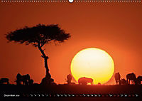 Auf Safari in Kenia 2018 (Wandkalender 2018 DIN A2 quer) - Produktdetailbild 1