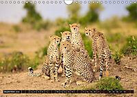 Auf Safari in Kenia 2018 (Wandkalender 2018 DIN A4 quer) - Produktdetailbild 8