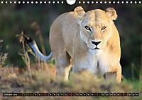 Auf Safari in Kenia 2018 (Wandkalender 2018 DIN A4 quer) - Produktdetailbild 9