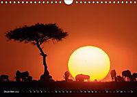 Auf Safari in Kenia 2018 (Wandkalender 2018 DIN A4 quer) - Produktdetailbild 11