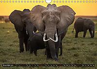 Auf Safari in Kenia 2018 (Wandkalender 2018 DIN A4 quer) - Produktdetailbild 10