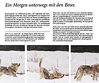 Auge in Auge mit dem Wolf - Produktdetailbild 10