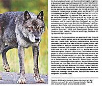 Auge in Auge mit dem Wolf - Produktdetailbild 7