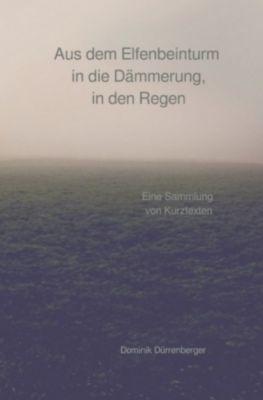 Aus dem Elfenbeinturm in die Dämmerung, in den Regen, Dominik Dürrenberger