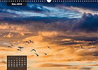 australian colors (Wandkalender 2018 DIN A3 quer) - Produktdetailbild 3
