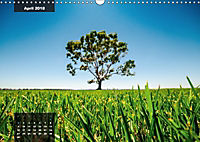 australian colors (Wandkalender 2018 DIN A3 quer) - Produktdetailbild 4